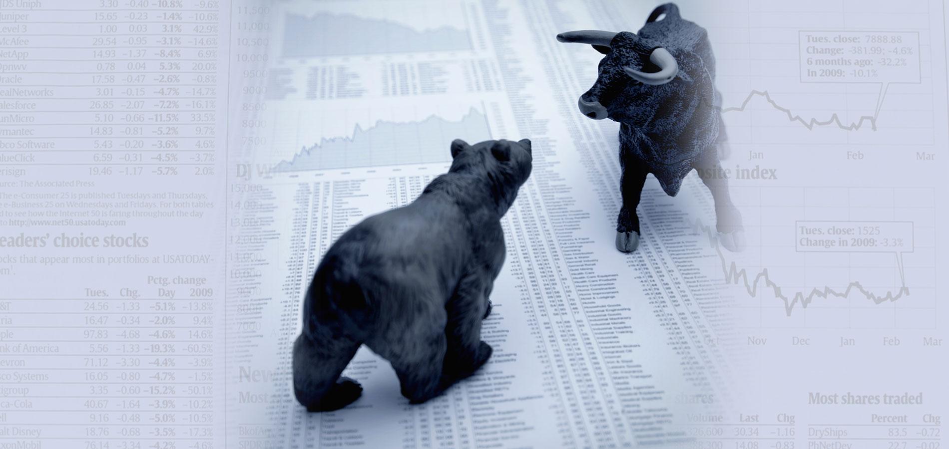 bear-or-bull-market